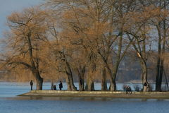 Park on Lake. With trees and people sitting or standing in sunshine, blue water Stock Photos