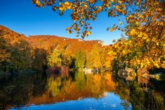 Park with a lake in autumn colors. Park with a lake in autumn colors in the spa town Rajecke Teplice in Slovakia, Europe Royalty Free Stock Photography