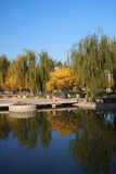 Park. Lake in a park, Beijing, China Stock Images