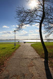 Park on the lake Royalty Free Stock Photography