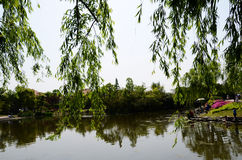 Park lake. Relaxing in the park lake Royalty Free Stock Photography
