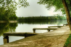 Park lake in the summer. Picturesque summer landscape of a park lake Stock Photos