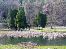 Park and lake in Turcianska Stiavnicka Royalty Free Stock Images