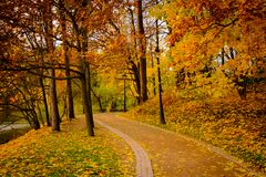 Park landscape at autumn. Park landscape at golden fall Stock Photos