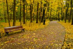 Park landscape at autumn. Park landscape at golden fall Stock Photo