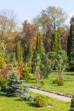 Park landscape. Green autumn Park landscape design Stock Image