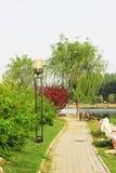 Park landscape Stock Photos