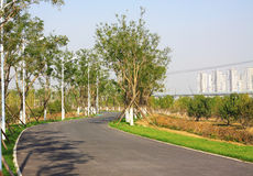 Park landscape Royalty Free Stock Photography