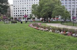 Park landscape from Washington District of Columbia USA Royalty Free Stock Image