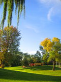 Park-Landschaft lizenzfreies stockfoto
