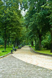 park lane obraz royalty free