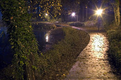 A park lane at night, after rain, during fall. Stock Photos