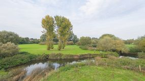 A park at late September, view of a river Stock Photo