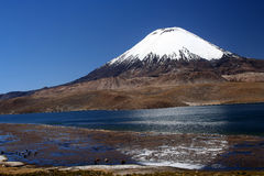 Park Lauca landscape Royalty Free Stock Photo