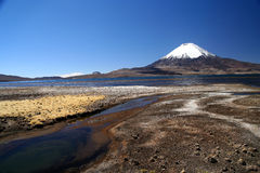Park Lauca landscape Stock Photography