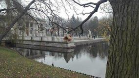 Park lazienski Warschau Lizenzfreies Stockfoto
