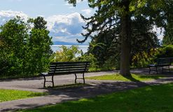Park and Leman lake on the background Royalty Free Stock Photo