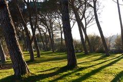 Park of Lourmarin. Provence-Alpes-Cote d`Azur. France Royalty Free Stock Photos
