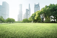 Park in lujiazui financial centre, Shanghai Stock Photography
