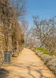 Park in Lyon royalty-vrije stock fotografie
