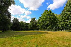 Park meadow Stock Photography