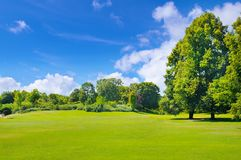 Park, meadow and blue sky. Park, green meadow and blue sky Stock Image