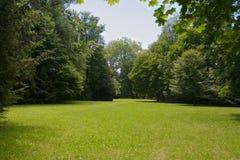 Park meadow Stock Photos