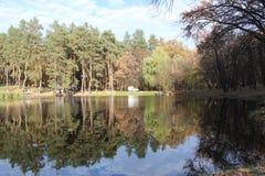Park Meer Royalty-vrije Stock Fotografie