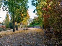 Park met bank Royalty-vrije Stock Foto