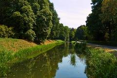 Park met groene bomen royalty-vrije stock fotografie