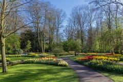 Park met multi-colored de lentebloemen met pond Royalty-vrije Stock Afbeeldingen
