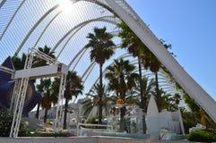Park met palmen Royalty-vrije Stock Afbeelding