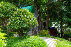 Park met struiken en stenen royalty-vrije stock foto