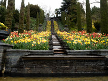 Park met tulpen en waterval Stock Foto