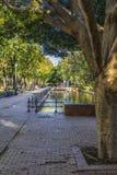 Park met vijver royalty-vrije stock fotografie