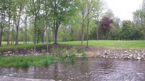 Park met water Royalty-vrije Stock Afbeeldingen