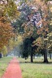 Park mit einem Erdweg Stockfoto