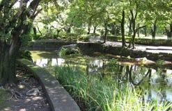Park mit einem Gehweg neben einem langsamen Fluss Lizenzfreie Stockfotografie