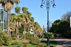 Park mit Palmen Lizenzfreie Stockfotos