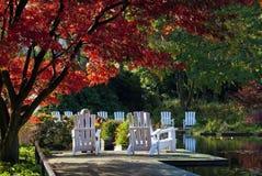 Park mit rotem Baum und weißen Stühlen Lizenzfreies Stockbild