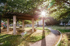 Park mit Sonnenlicht in Japan Stockfoto