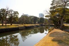 Park mit Wasser Stockbild