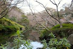 Park mit Wasser Stockfotografie
