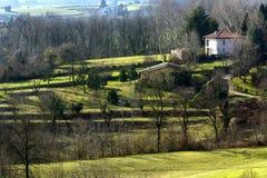 Park of Montevecchia (Brianza) Stock Photos