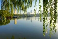 Park morning. Park landscape in morning in Taiyuan,Shanxi,China Royalty Free Stock Photo