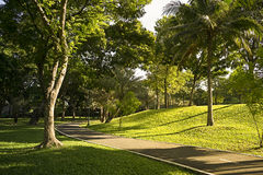 Park in the morning Stock Photo