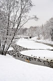 Park in Moscow with ducks after heavy snow Stock Photo