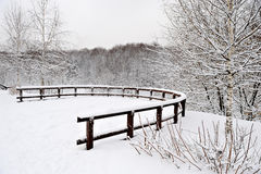Park in Moscow after heavy snow Royalty Free Stock Photography