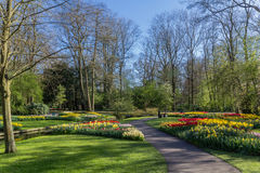 Park with multi-colored spring flowers with pound Royalty Free Stock Images