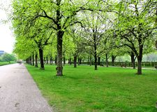 Park in Munich Royalty Free Stock Photography